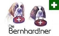 Die Bernhardiner